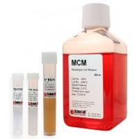 肾系膜细胞培养基 MCM
