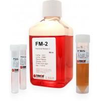 成纤维细胞培养基-2 FM-2