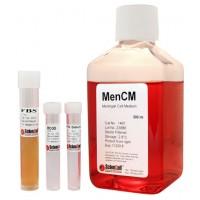 脑膜细胞培养基 MenCM
