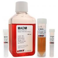 间充质干细胞-脂肪细胞分化培养基 MADM