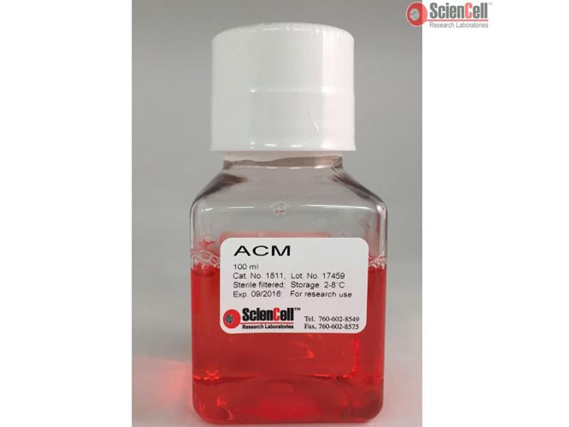 星形胶质细胞条件培养基 ACM