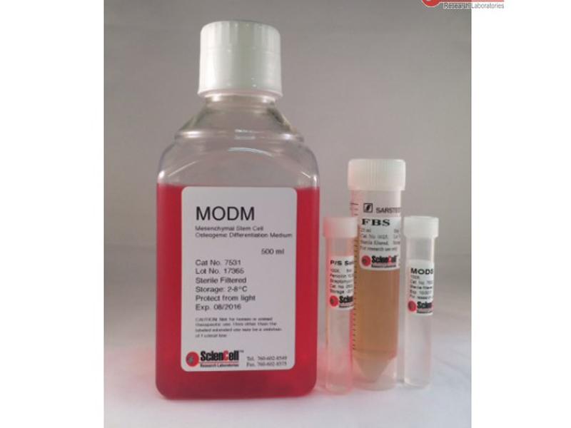 间充质干细胞-成骨细胞分化培养基 MODM