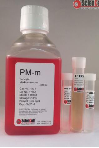 周细胞培养基-小鼠 PM-m